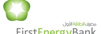 2008 – Deputy CEO and Chief Commercial Officer of First Energy Bank (FEB)